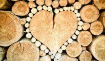 Wood Glue Irelaand